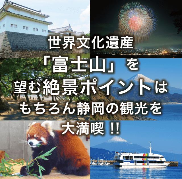 世界文化遺産「富士山」を望む絶景ポイントはもちろん静岡の観光を大満喫!!